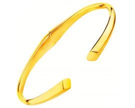 Bracelet rigide acier Elixa - EL126-2900 BR